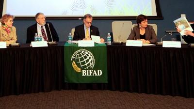 BIFAD panel
