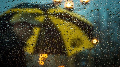 rainy-black-gold