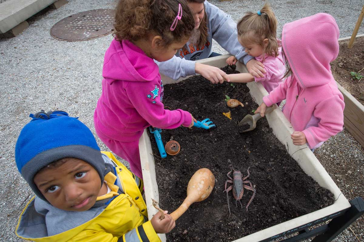 Children from Green Door, exploring the sensory table. There are different items and tools from the garden in this area where children are free to dig and look for worms, roly poles and more. Children are drawn to digging but we don't want them to dig everywhere in our garden space. They come to learn that the sensory garden is where it is safe for them to dig.