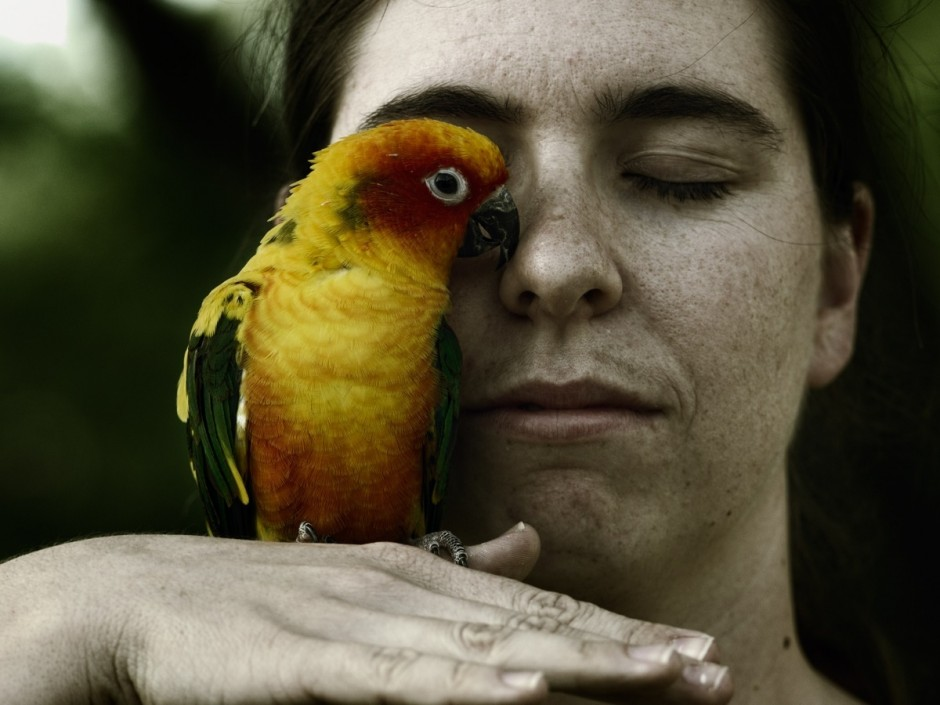 Sarah Hooper and Gonzo the Sun Conure