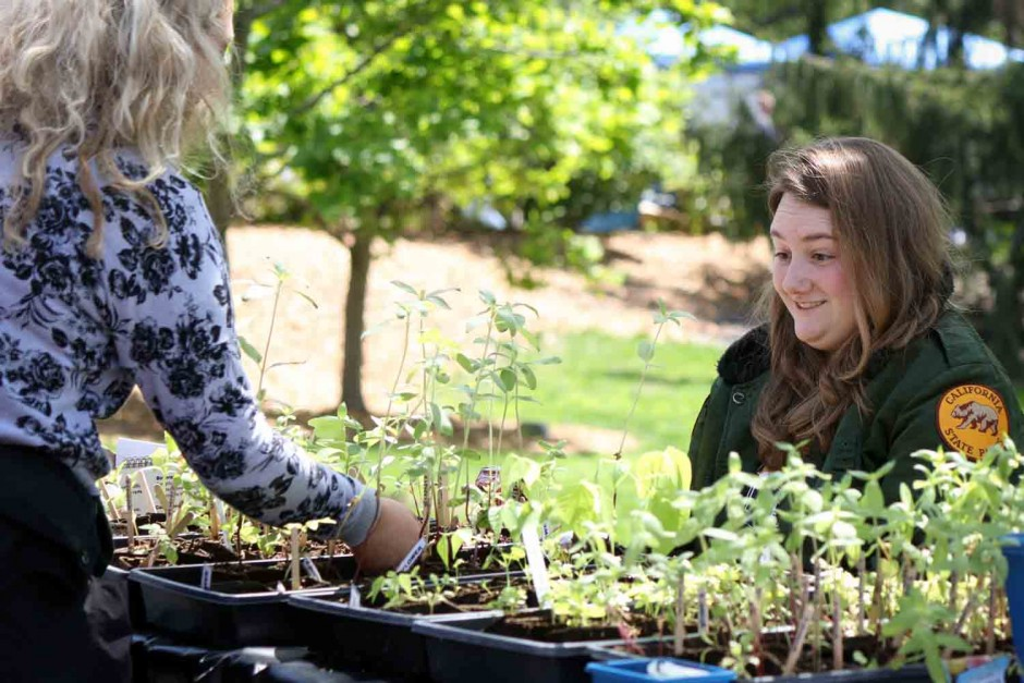Student worker at MU sustainability office (talking to woman, sitting on chair behind table full of plants): Jenna Nelsen-McMichael