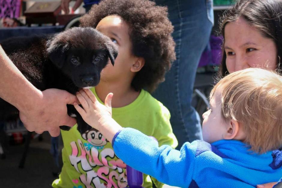 William Matthews pets a black lab puppy.