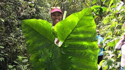 Student holding giant leaf.