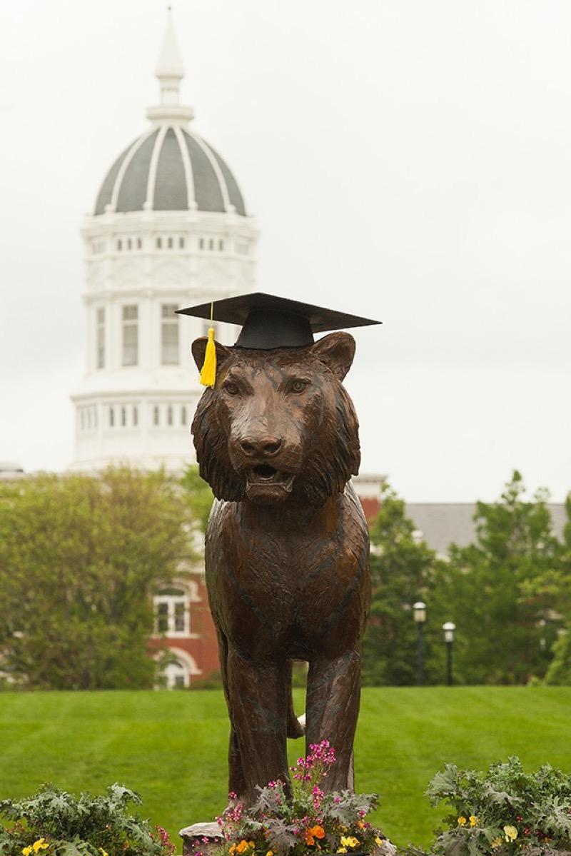 Bronze tiger in a graduation cap.