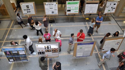 Aerial image of students looking at research posters.