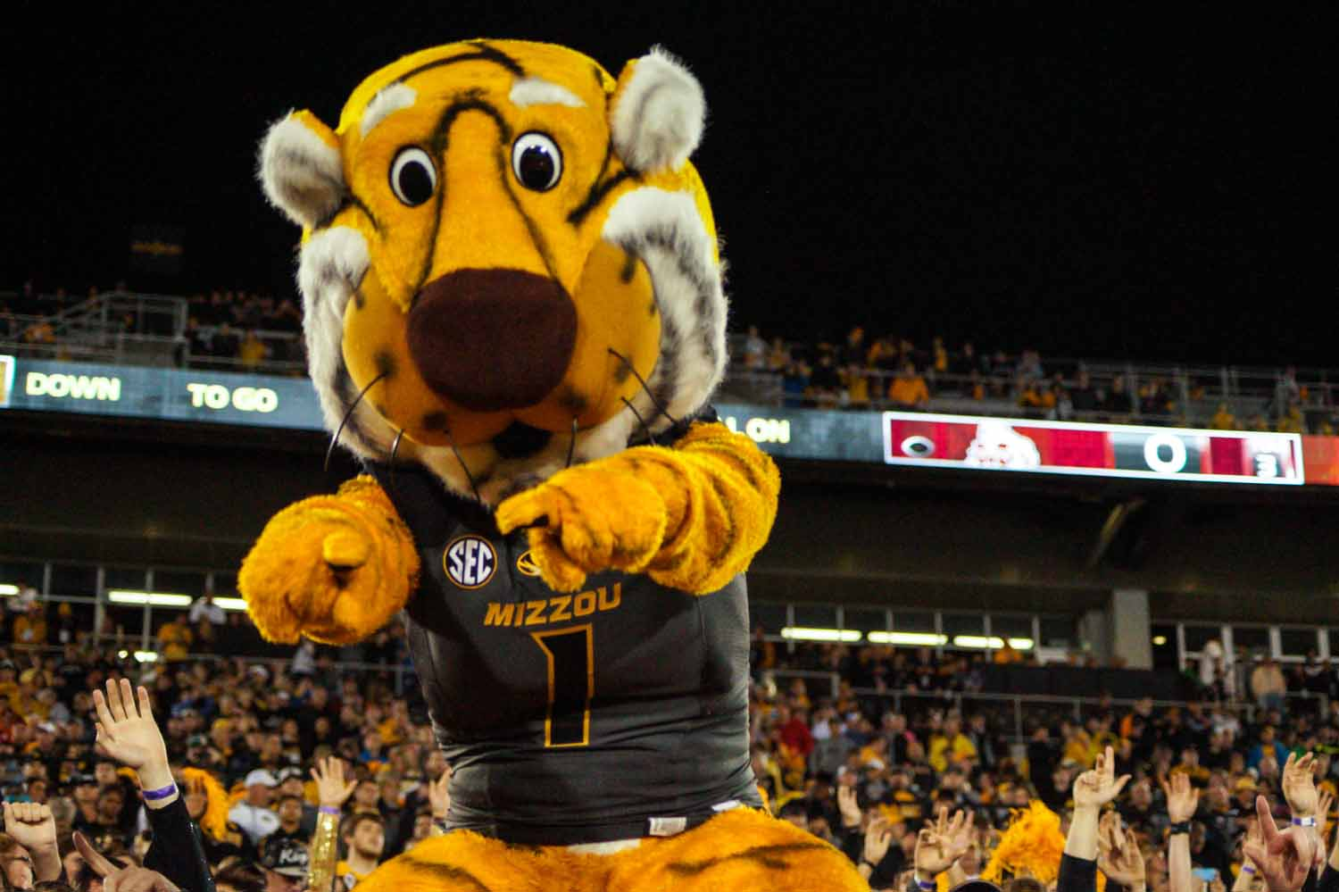 Truman the Tiger waves to cheering fans before kickoff. Photo by Allison Collins.
