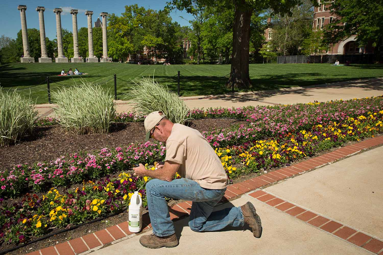 Campus facilities employee Stephen Parker tends to the flowers on the southwest corner of The Quad.