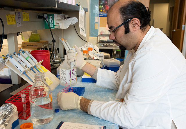 Mahmoud Khalafalla, a Ph.D. student at Weisman's lab.
