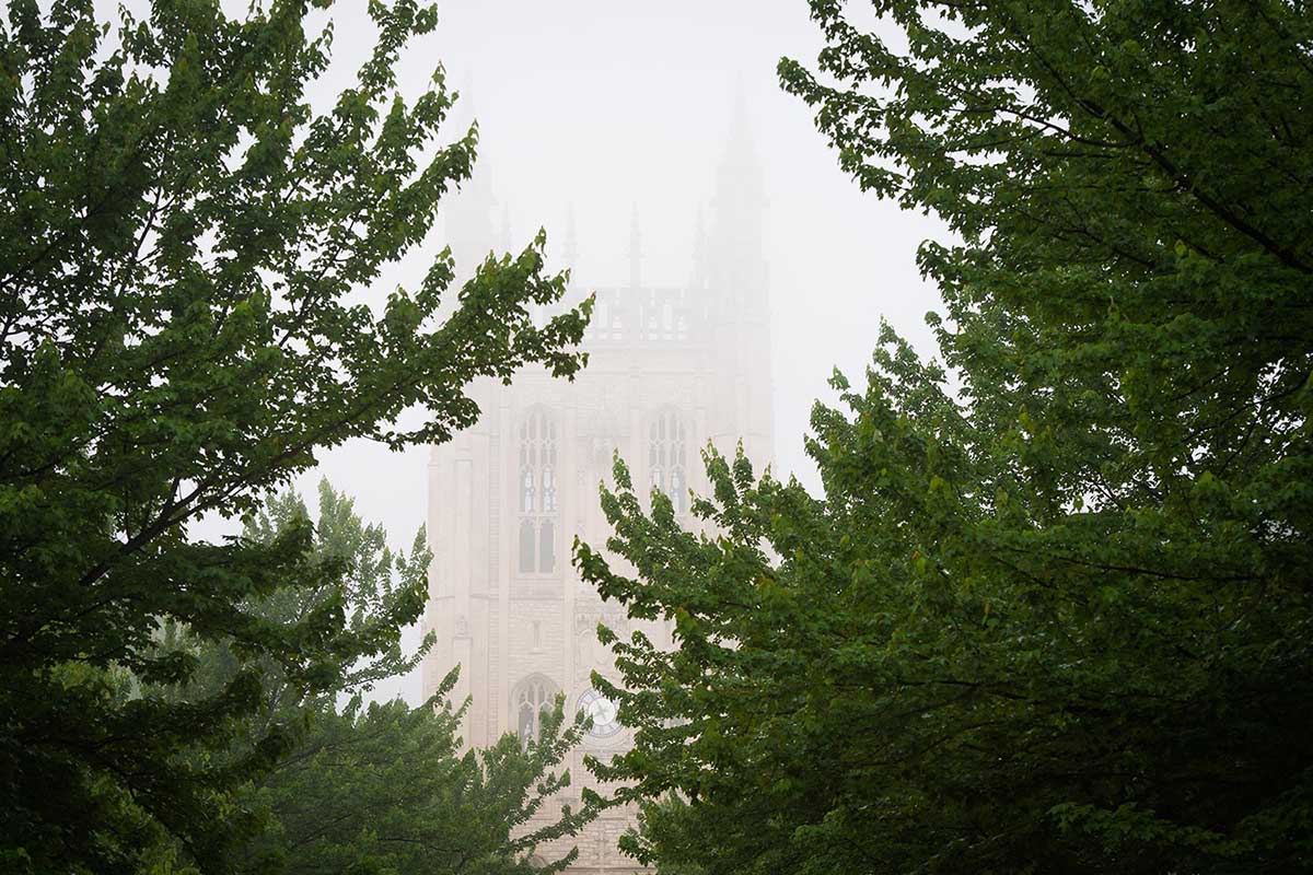 Memorial Union glimpsed through trees and fog.