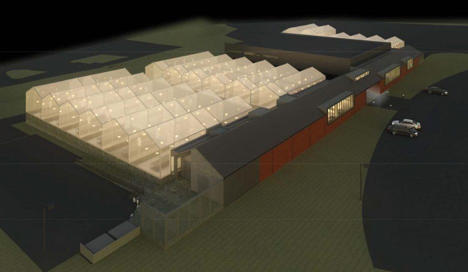 greenhouse rendering