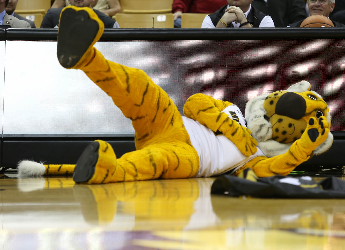 Truman the Tiger falls over in disbelief while watching the magic show performed during halftime.