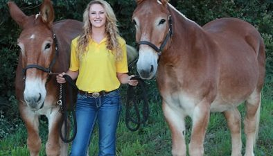 Picture of MU student Carley Brucks with two mules