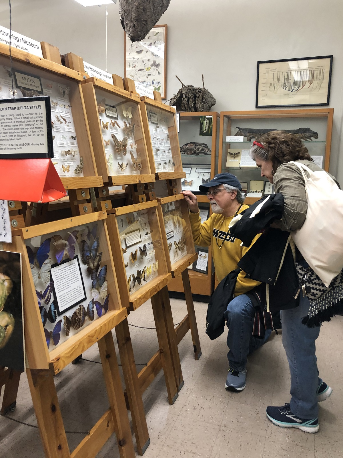 Visitors toured the Enns Entomological Museum in the Ag Building – one of the largest university collections in the world.
