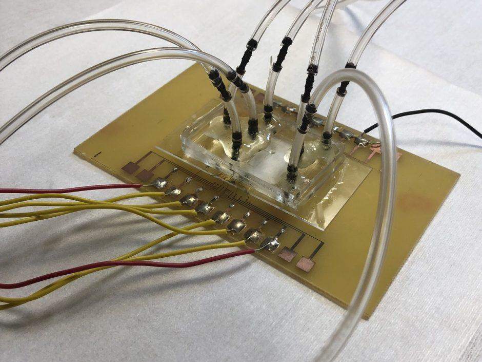 Almasri-biosensor (1)
