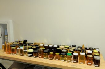 These samples of honey were analyzed by the partnership between Sweetwater Science Labs and MU.