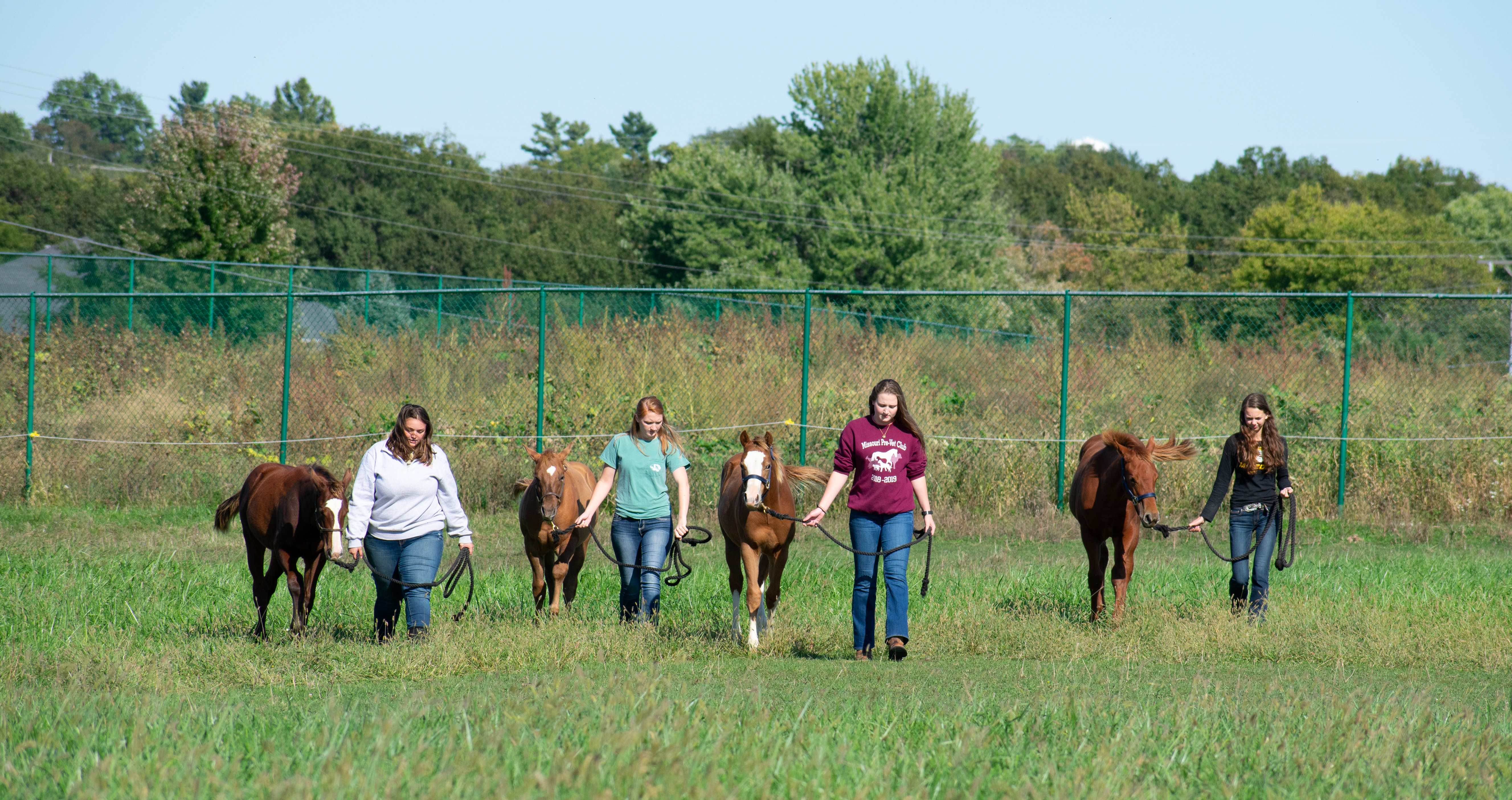 This is a picture of students in the equine program and their horses.