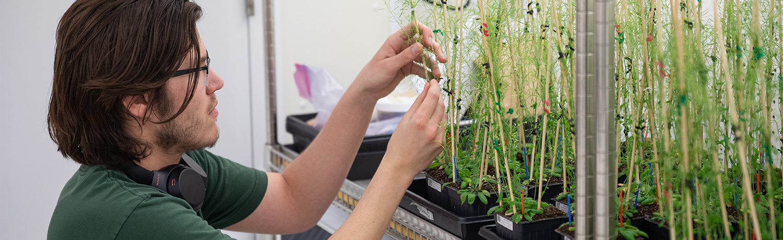 plant_science