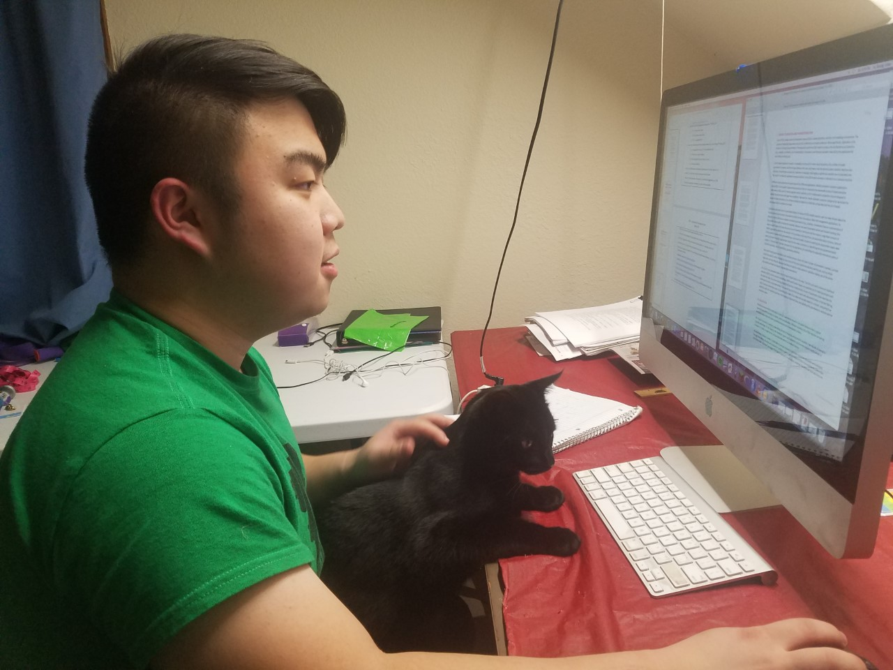 Xu studies with his cat perched on his lap