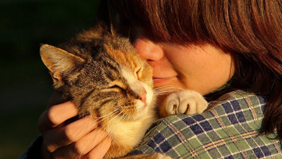 woman snuggling cat