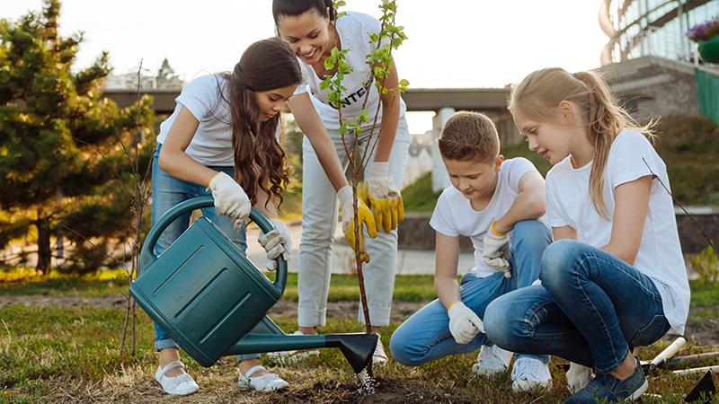 kids planting a tree