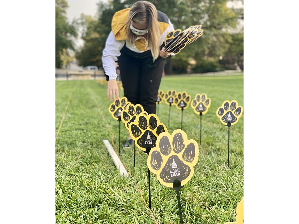 a woman places paws on sticks in the grass
