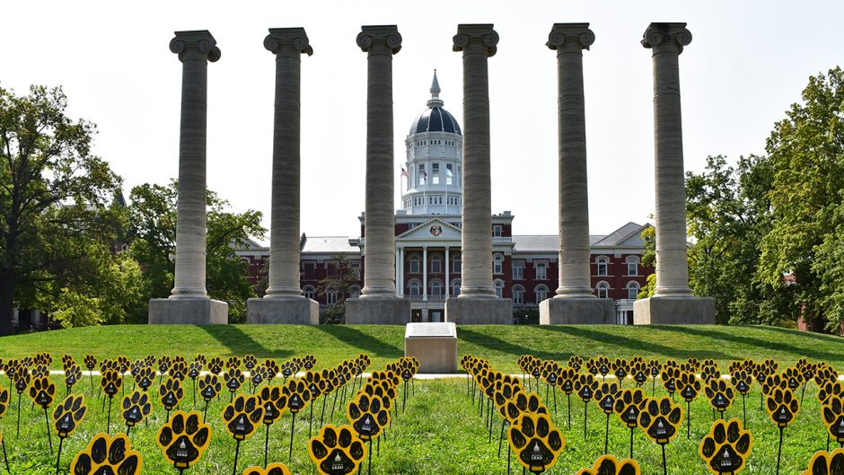 sticks with pawprints on them appear on Francis Quadrangle in front of the columns