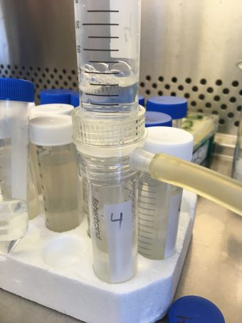 testing wastewater for COVID-19