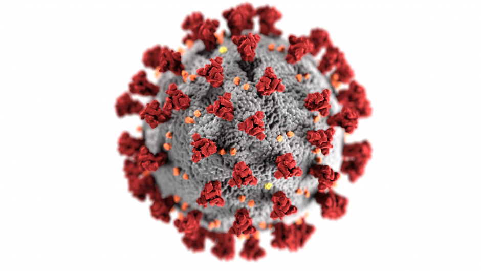 This is a picture of a coronavirus model.
