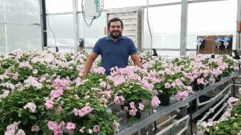 Juan Cabrera-Garcia, an MU Extension horticulture specialist in southeastern Missouri, with flowers in a greenhouse.