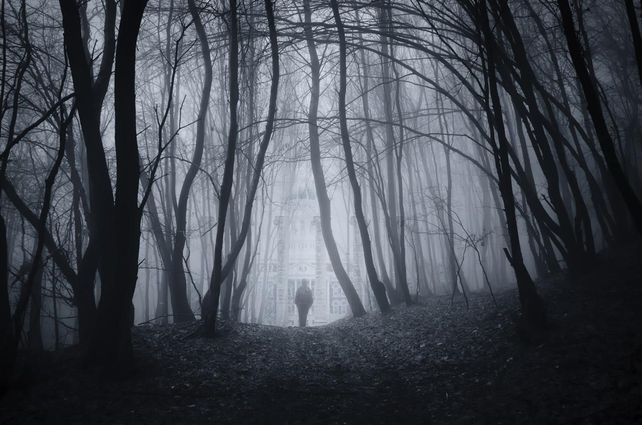 spooky forest near Jesse Hall
