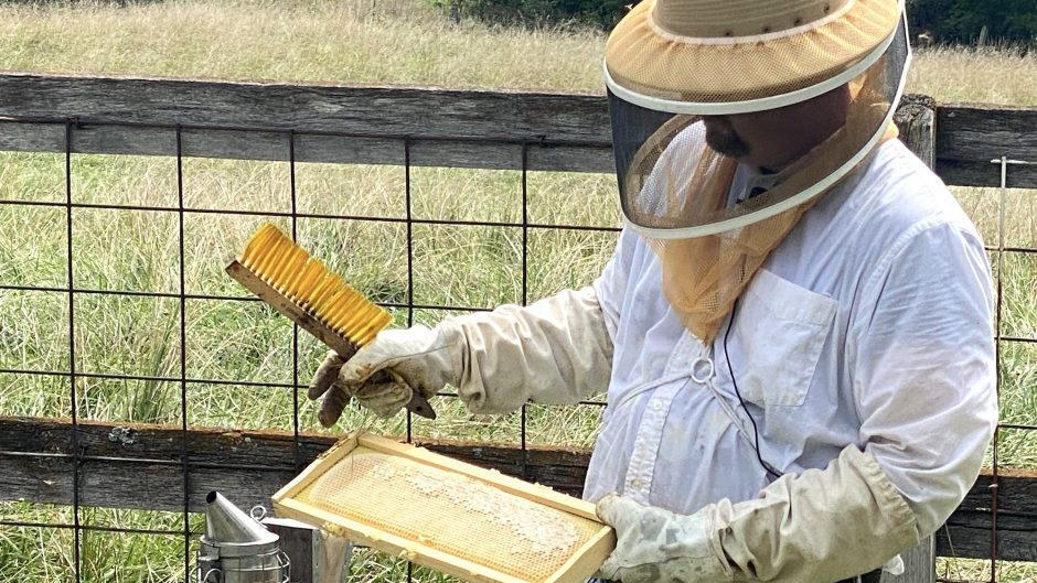 University of Missouri Extension agronomist and longtime beekeeper Travis Harper will teach the hands-on portion of the Heroes to Hives program in Missouri. The program helps veterans learn beekeeping.