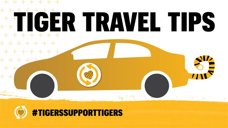 graphic of a car with a tiger tail that says