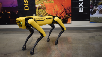 a black and gold robot dog