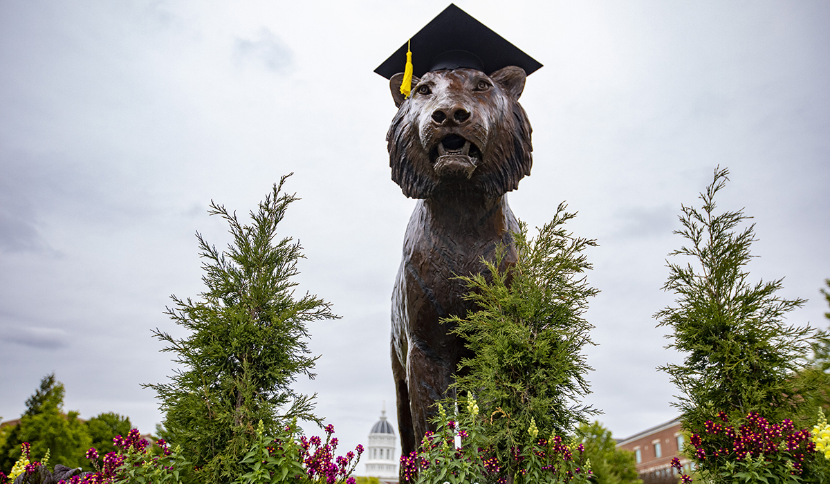 Tiger statue with mortarboard