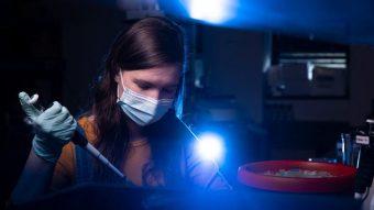 Stephanie Scott works in a biochemistry lab in Schweitzer Hall