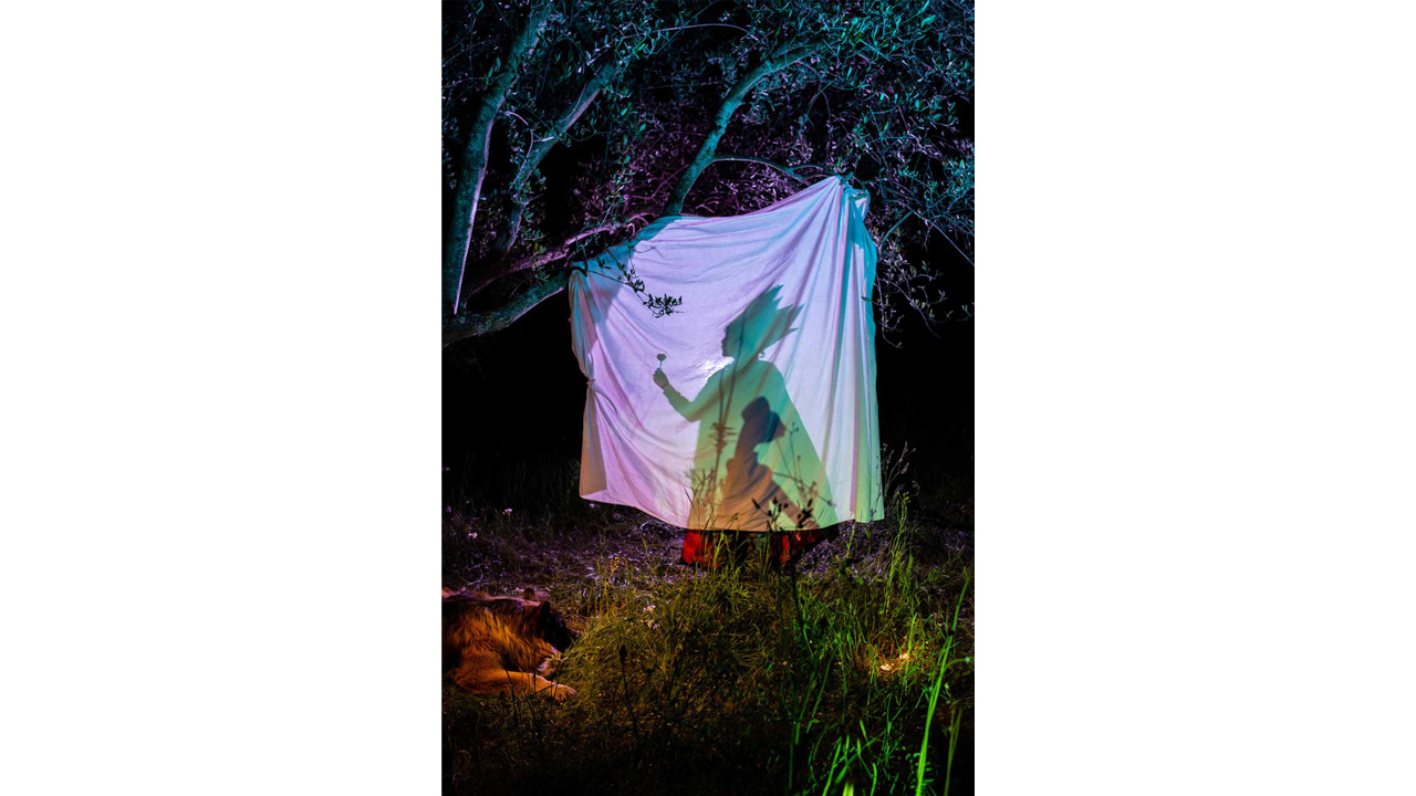"""Giovanni Ferraro, 8, acting """"The King Fish"""" (a human king with a fish soul) during a solo performance of shadows behind a curtain made with an old bedsheet. This image, part of a portfolio of 20 images by Italian photographer Elisabetta Zavoli that feature her two sons, Davide and Giovanni, won first place in COVID-19 Personal Expression category at POYi 2020. """"We ended up creating a universe of dreams in complete darkness thanks to the boys' connection with the natural environment,"""" she says."""