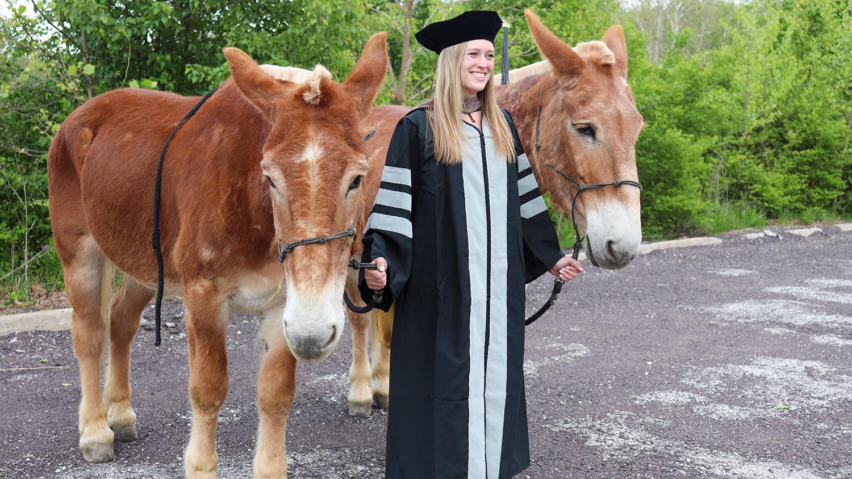 a graduate in regalia with two mules