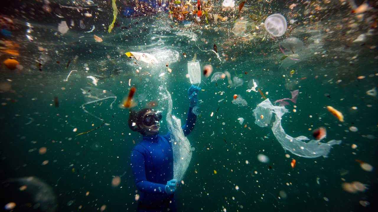 """Plastic waste equivalent to 33,880 plastic bottles is being mixed into the Mediterranean per minute, and """"medical wastes"""" used during the pandemic are already reaching the seas. This image, taken underwater near the coast of Turkey by Sebnem Coskum, placed second in the Science and Natural History category at POYi 2020 and placed first in the Nature and Environment category in POY Asia."""