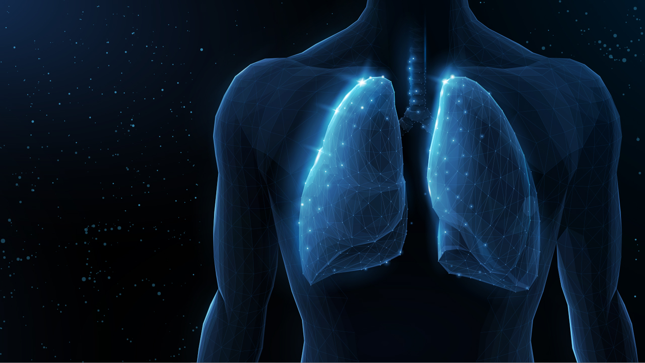medical concept of lungs. Source: Shutterstock