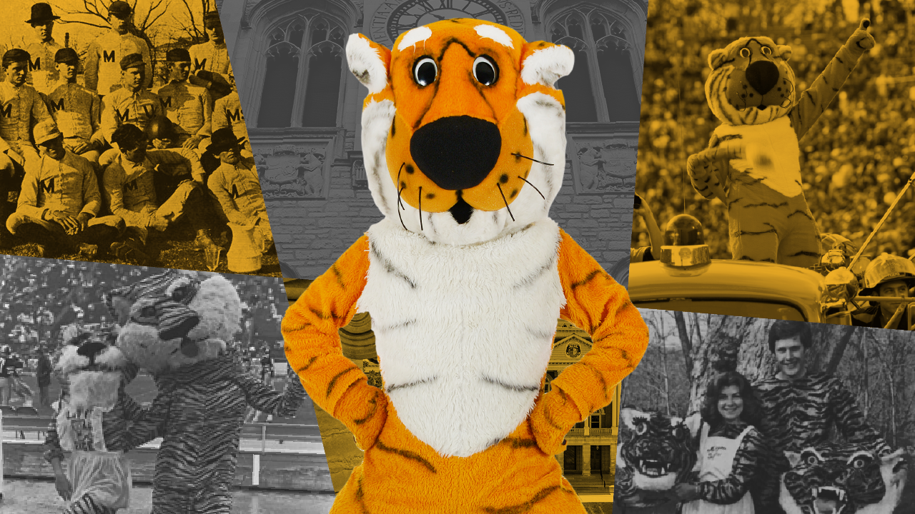 concept graphic containing historical images of truman the tiger