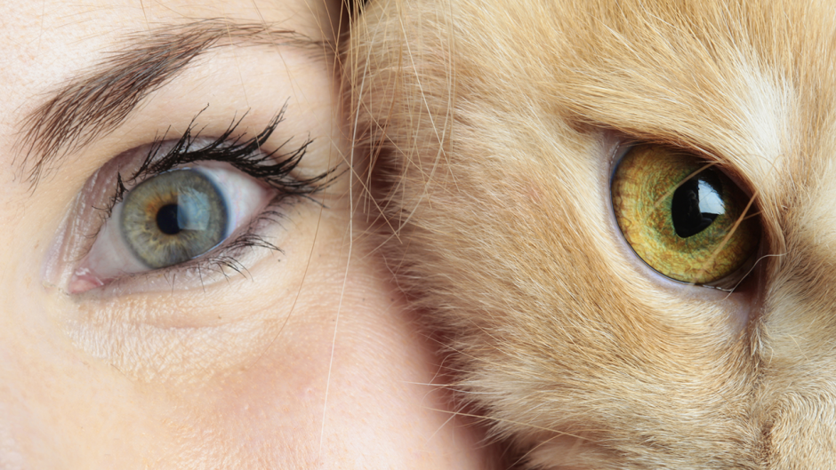 This is a photo of a human face next to a cat face.