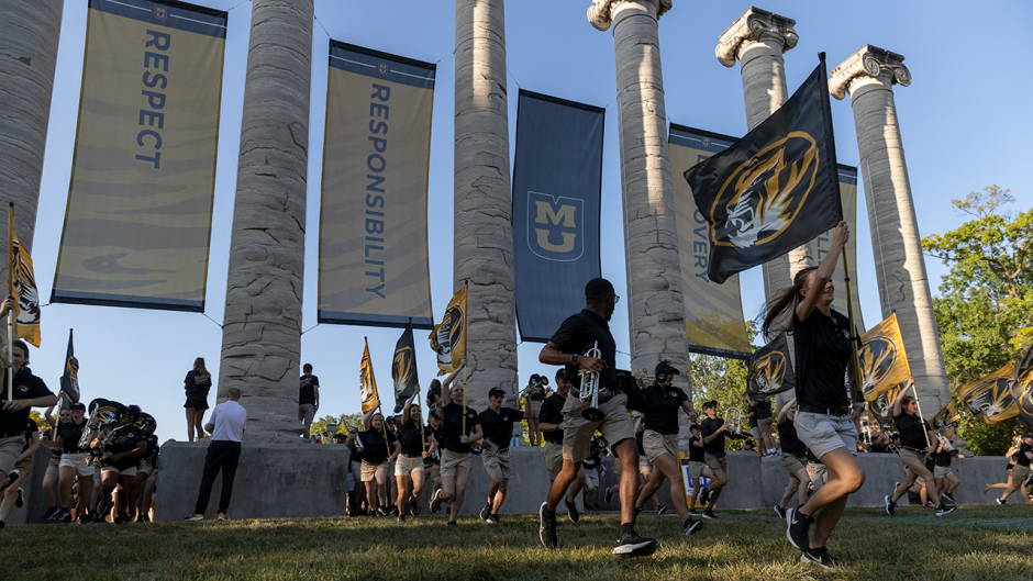 This is an image of the Tiger Walk.