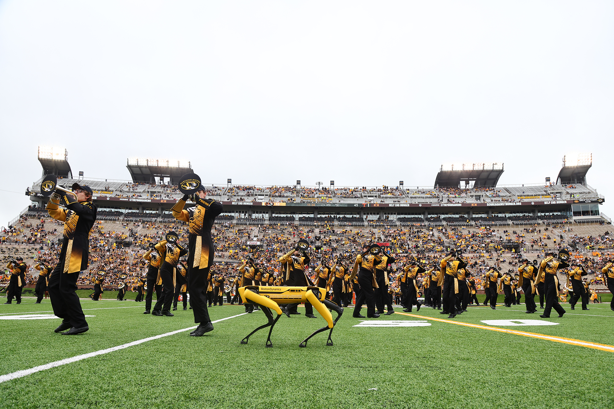 marching mizzou performs with spot on faurot field